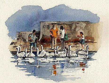 WICKLOW.   BRAY feeding the swans by Val Byrne