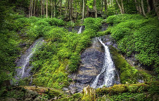 Wigwam Falls by Greg Reed