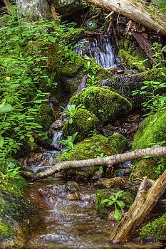 Wigwam Falls II by Greg Reed