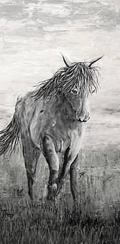 Wild and Free Gray Scale by Suzanne Theis