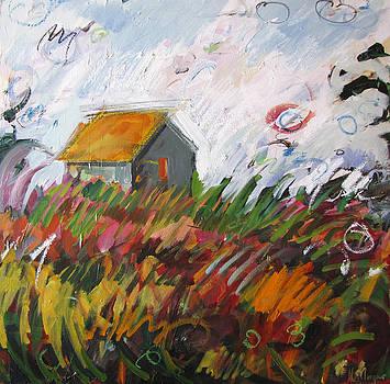 Wild Barn by Marianne  Gargour