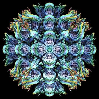 Wild Flower by Lyle Hatch