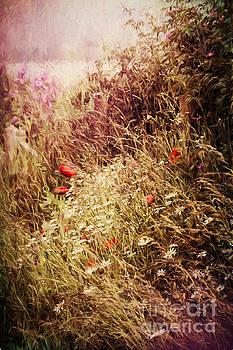 Wild Flowers by Ann Garrett