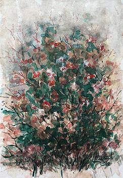 Wild flowers by Laila Awad Jamaleldin