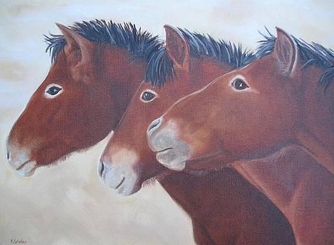 Wild Ponies by Karen Snider