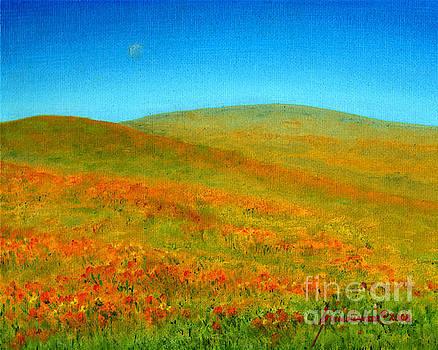 Wild Poppies  by Jerome Stumphauzer