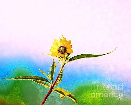 Wild Sunflower by Lila Fisher-Wenzel