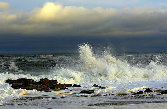 Wild Waves by Suzanne DeGeorge