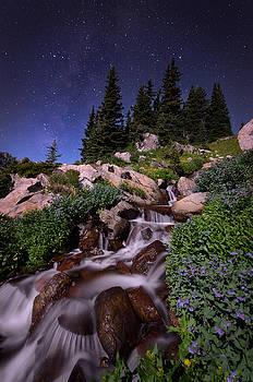 Wildflower Finale In The Indian Peaks by Mike Berenson