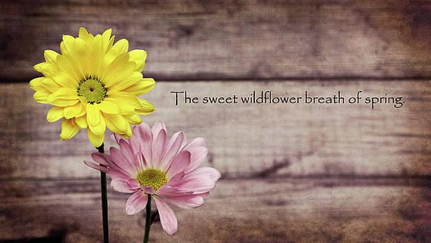 Wildflowers of Spring by Vicki McLead