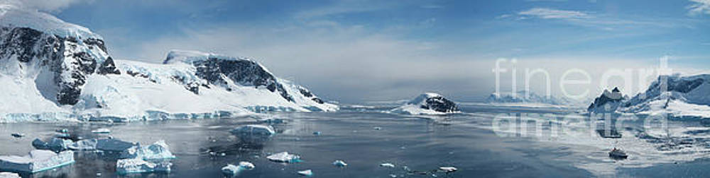 Wilhelmina Bay Antarctica Panorama  by Lilach Weiss
