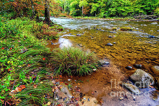 Williams River Early Autumn by Thomas R Fletcher