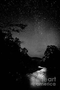 Williams River Starlight and Fireflies by Thomas R Fletcher