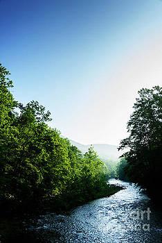 Williams River Summer Fog by Thomas R Fletcher