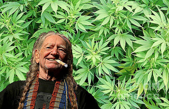 Willie Nelson Country by Pd