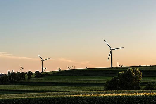 Wind and Corn by CJ Schmit