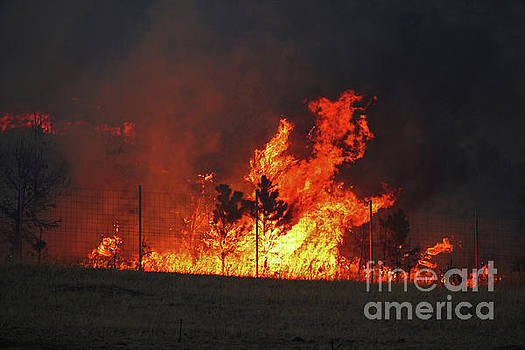Wildfire Flames by Bill Gabbert