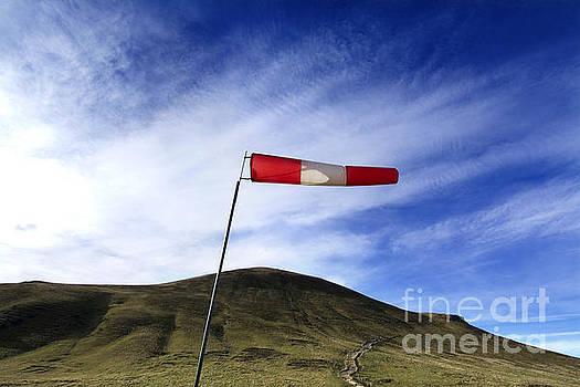 BERNARD JAUBERT - Wind direction. France.