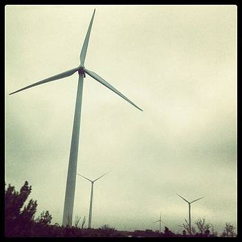 Wind Mills... Didn't Expect To See by Paula Manning-Lewis
