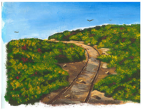 Winding Road by David Bartsch