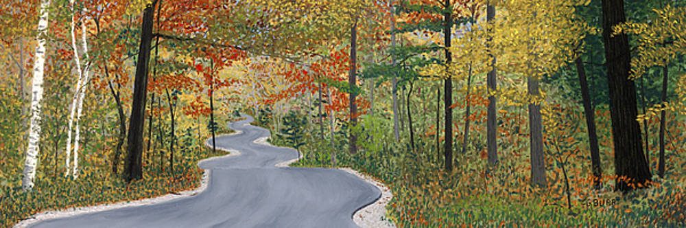 Winding Road by George Burr