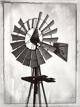 Windmill monochrome by Ella Kaye Dickey