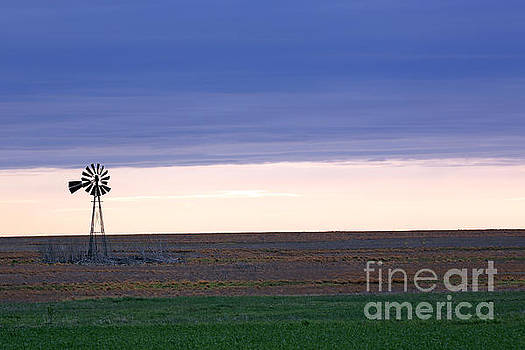 Windmill On THe Prairie by Betty Morgan