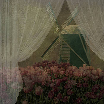Windmill through laced curtain by Jeff Burgess