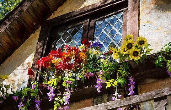 Window Box by Black Brook Photography