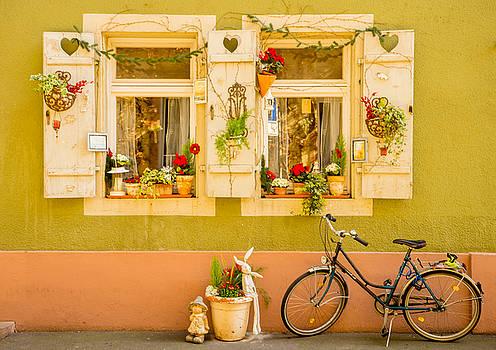 Window into Heidelberg by Denise Darby