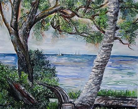 Window on Pine Island by Carol Allen Anfinsen