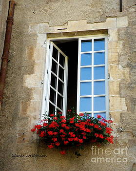 Window with Flowers by Lainie Wrightson