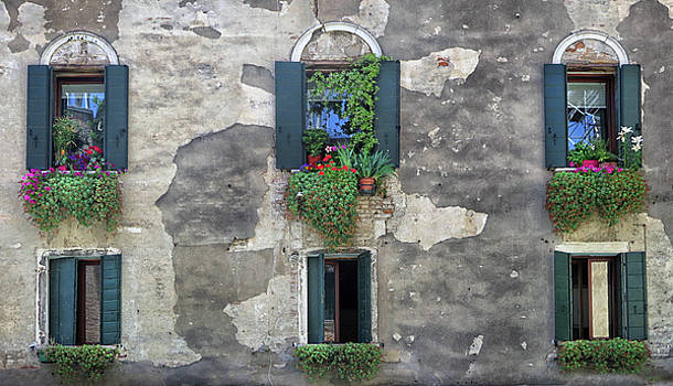Windows in Venice by Dave Mills