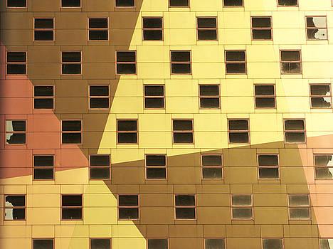 Windows by Tony Cordoza