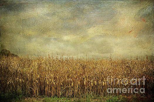 Winds of Change by Joan McCool