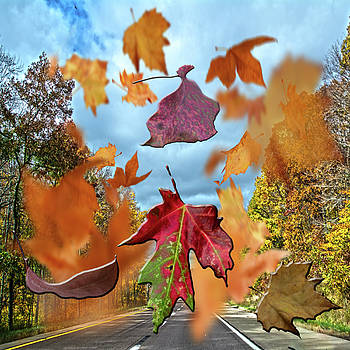 Winds of Change by Judy Hall-Folde