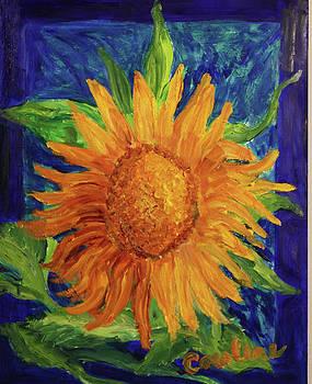 Windy day Sunflower by Carolene Of Taos