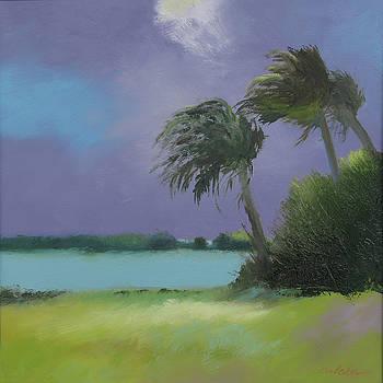 Windy Weather by Sheila Psaledas