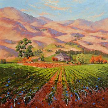 Wine Country II - Talley Vineyard Arroyo Grande by Lynee Sapere