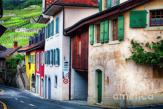 Wine Country Village in Lavaux by George Oze