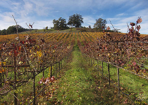 Wineland by Kenneth Hadlock