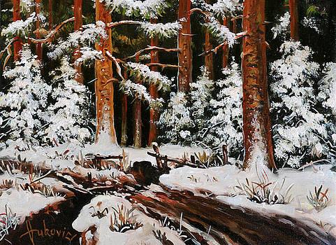 Winter - the fallen bridge by Dusan Vukovic