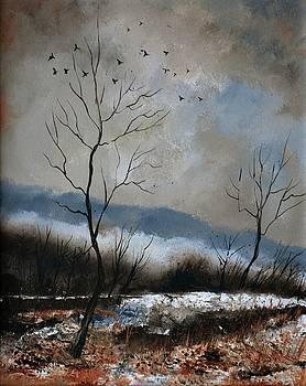 Winter 4571 by Pol Ledent
