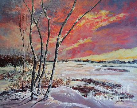 Winter Across the Lake  by Gail Allen