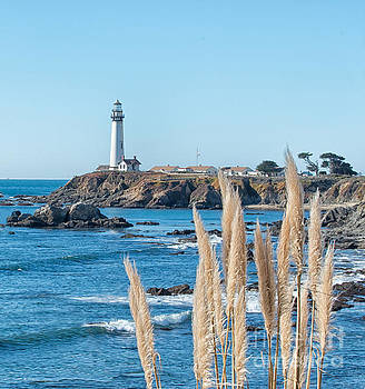 Winter afternoon Pigeon Point Lighthouse by Mark Chandler