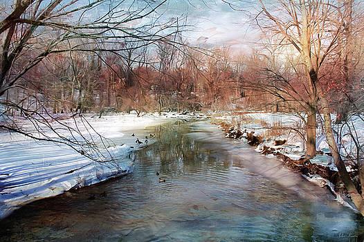 Winter at Cooper River by John Rivera