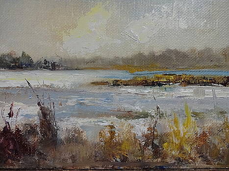 Winter at Sunken Meadow by Joan Sicignano