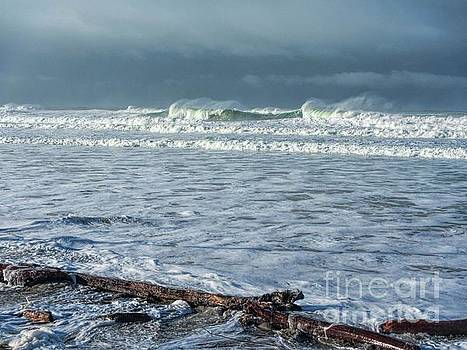 Winter at the Beach by Peggy J Hughes