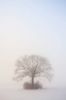 Winter attire by Davorin Mance