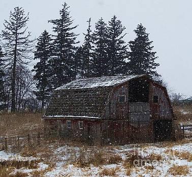 Winter Barn Beauty by J L Zarek